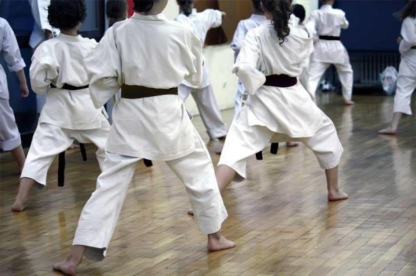 karatejutsu-martialarts.jpg